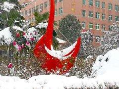 南阳工业学校雪景